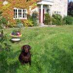 Suchard in Garden